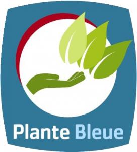Plante bleue 3 feuilles